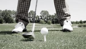 main_pro img_golf